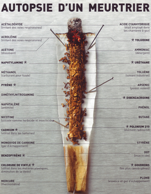 La composition d'une cigarette